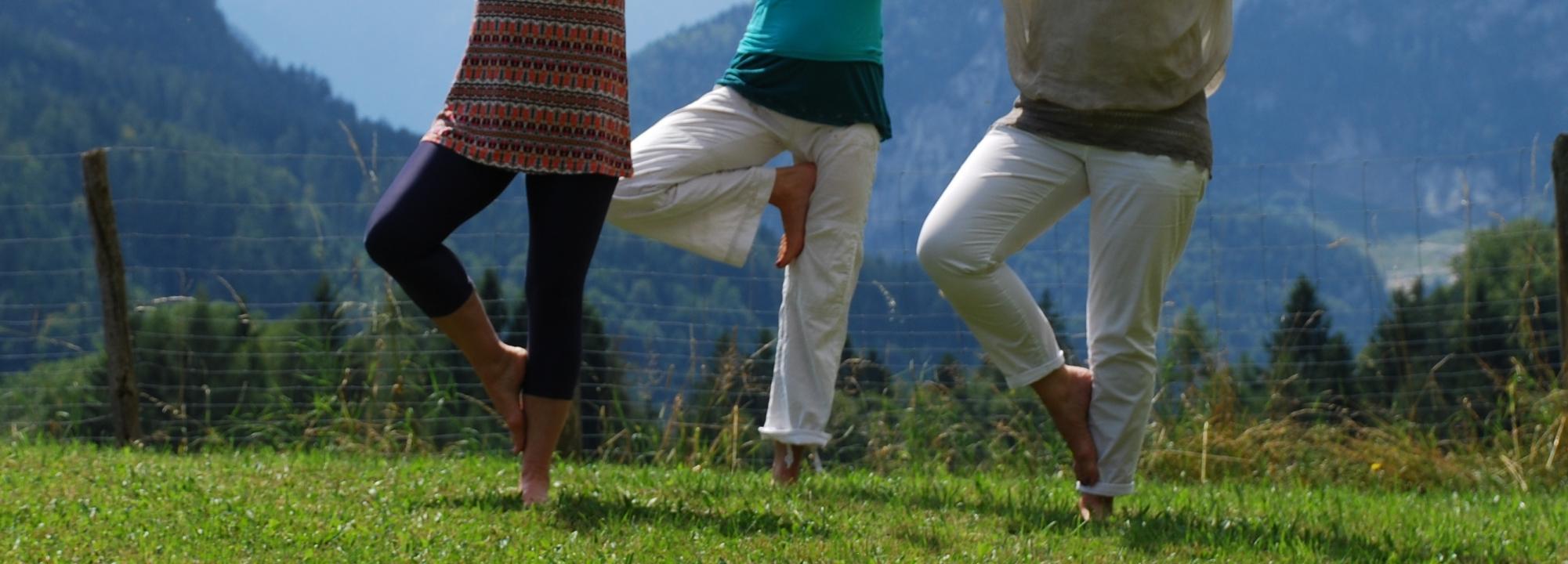 Yogaschule Carolin Flinker Baum Sommeryoga